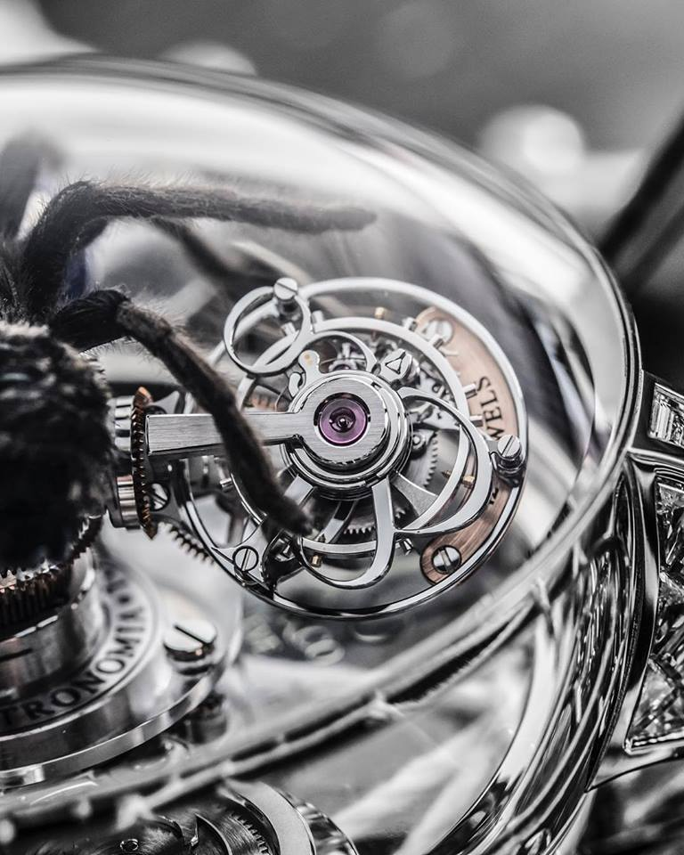 Astronomia Clarity Spider details