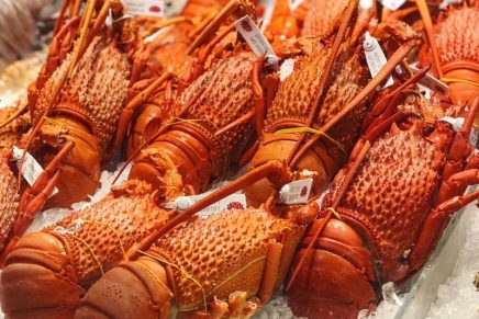 Lobsters are being sold for just $20 each in Australia – here's how to cook one
