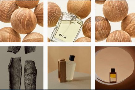 Sustainable beauty embracing the blessings of trees: Shiseido's new brand Baum Japan