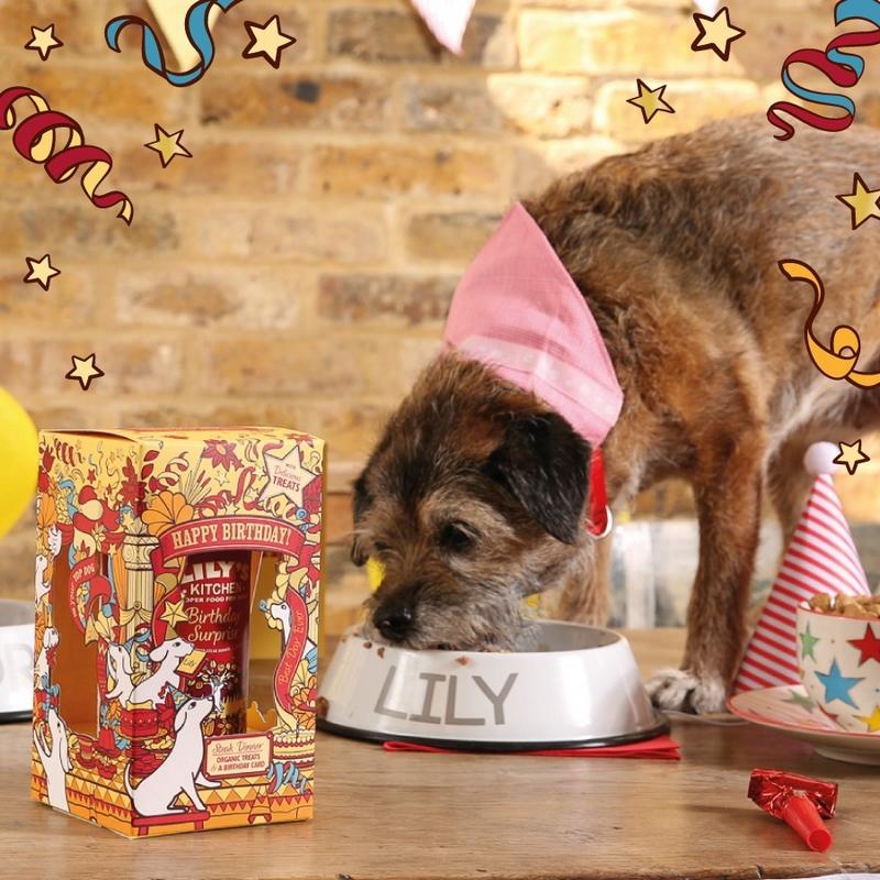 Birthday Surprise for Dogs Lilyskitchen