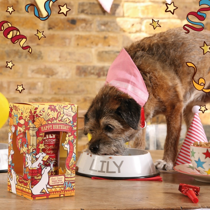 Birthday Surprise for Dogs Lilyskitchen