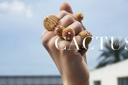 New Cactus de Cartier designs are in full bloom