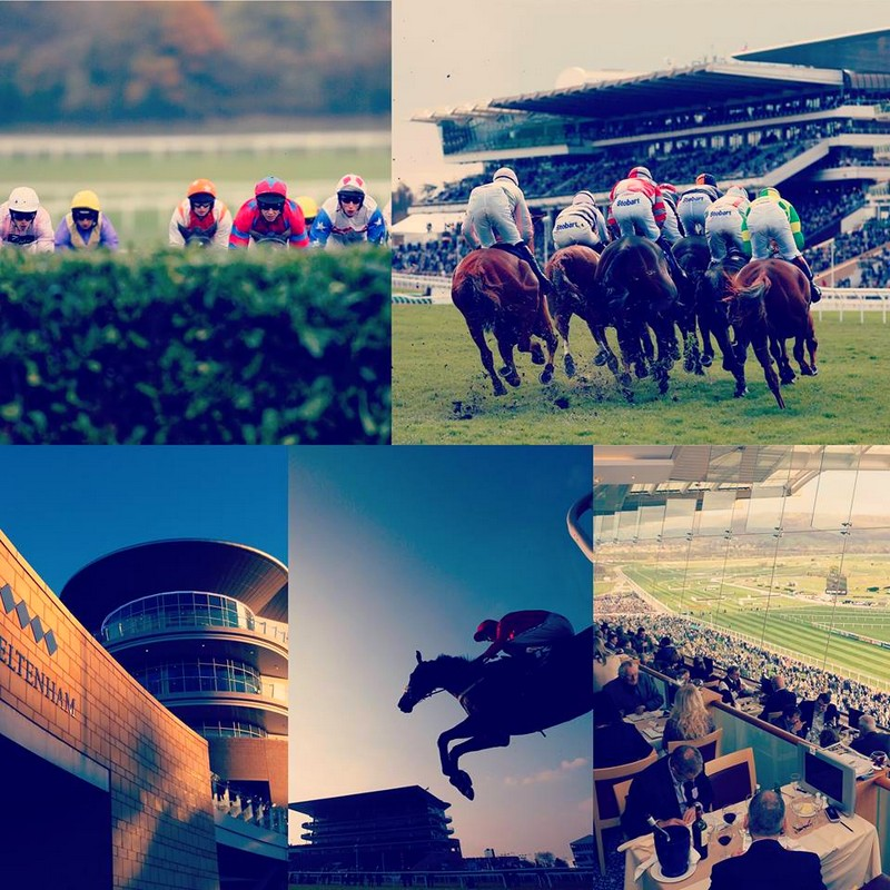 Cheltenham Racecourse Photos