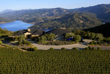 Limited-production Napa Valley Red Wines join the LVMH luxury group