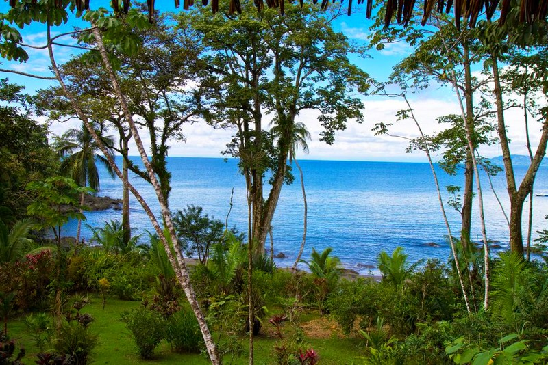 Copa De Arbol Beach & Rainforest Resort Costa Rica --