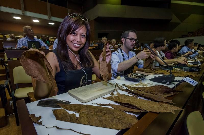 Cuban artisan making handmade an habano