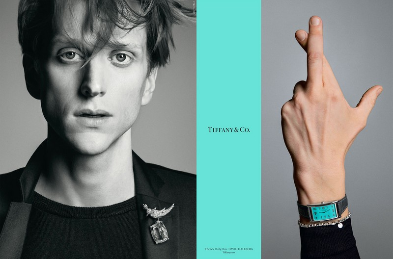 David Hallberg is wearing the Tiffany & Co. Schlumberger Bird on a Rock clip
