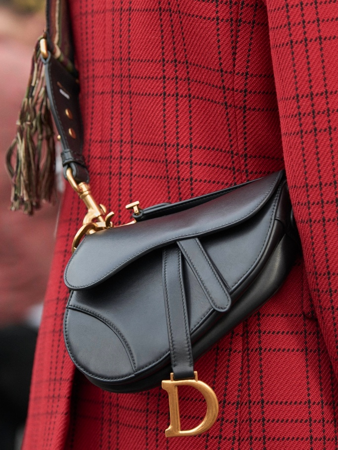 Dior saddle bag 2018-03
