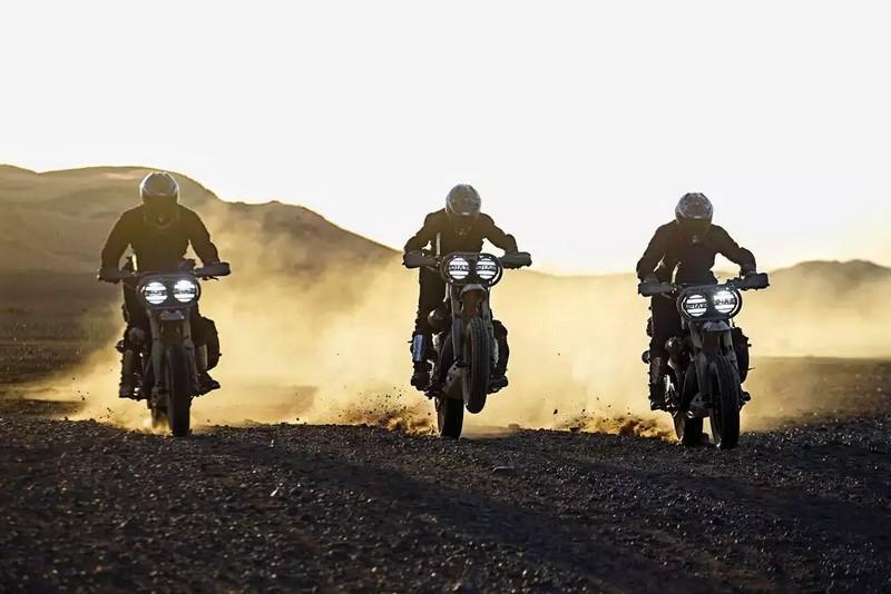 El Solitario Desert Wolves Custom Harley-Davidson