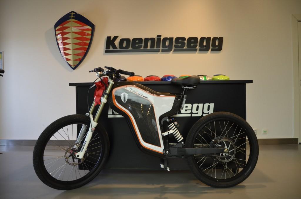 Electric Greyp G12 - custom bicycles