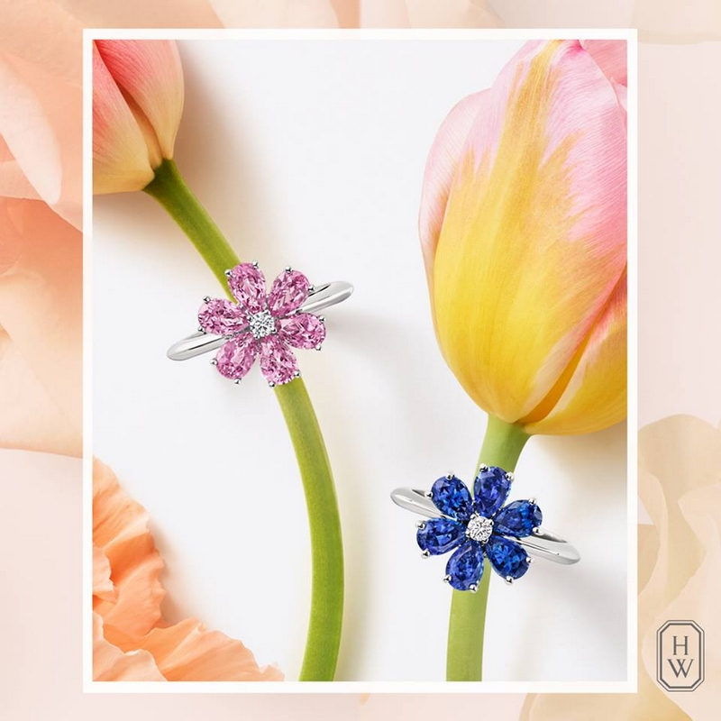 Forget-Me-Not Sapphire and Diamond Rings