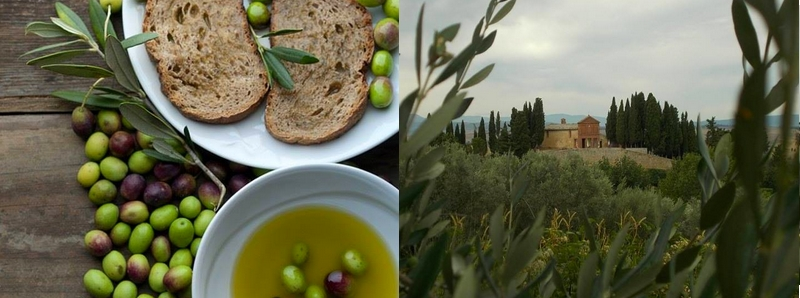 Fun things to do in Siena in one day - gourmet explorations