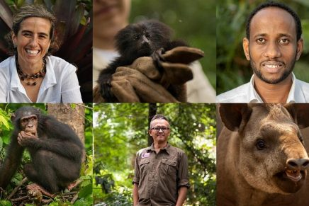 2020 Green Oscars Winners: Meet The Extraordinary Conservationists Saving Endangered Animals