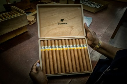 The XIX Habano Festival welcomes outstanding Habanosommeliers from all around the world