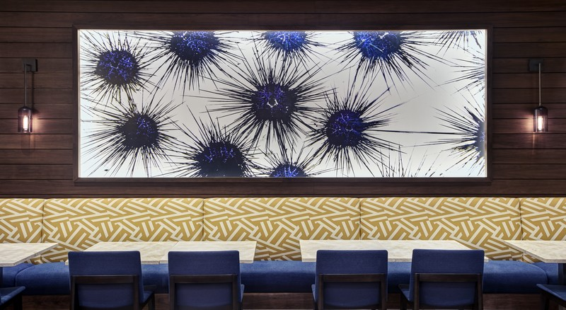 Hilton West Palm Beach - Restaurant wall at the Hilton West Palm Beach 2 - Chris Leidy