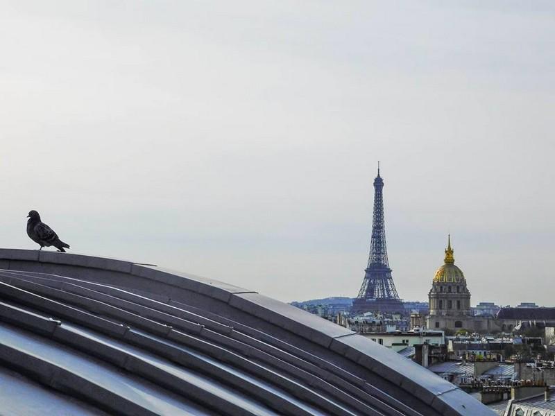 Hotel Lutetia Paris- views