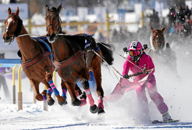 Impression of the White Turf St. Moritz, the famous international horse races on the frozen lake of St. Moritz, Switzerland, February 19, 2017