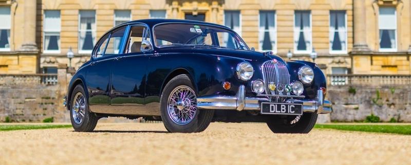 Jaguar Festival Photo