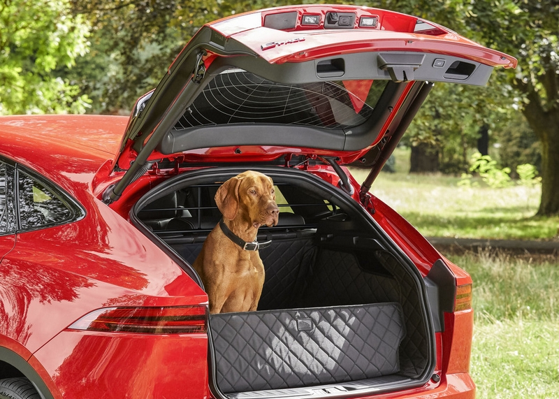 Jaguar Pet Products-