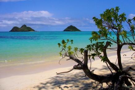 Baia do Sancho in Fernando de Noronha, Brazil is the #1 beach in the world