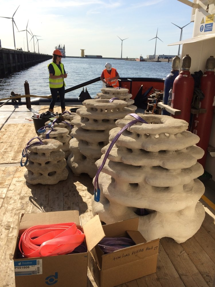Large Scale 3D Printed Reefs for the North Sea