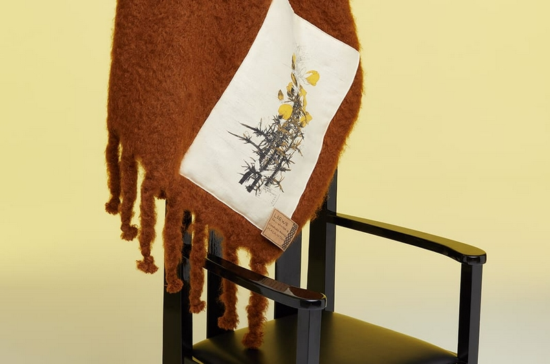 Loewe Mackintosh Scarves and blankets Collection