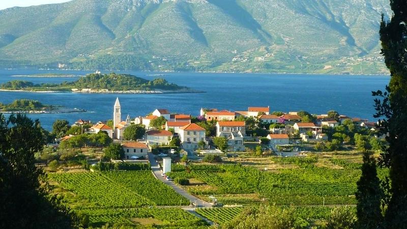 Lumbarda Croatia wines