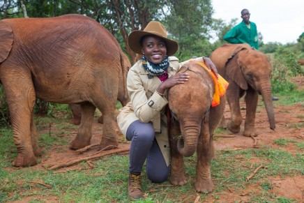 Poaching Steals From Us All: : Wildlife Protection Award 2019 goes to Award-winning actress Lupita Nyong'o