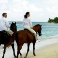 Luxurious Dates to Take Your Significant Other On-romantic horse riding