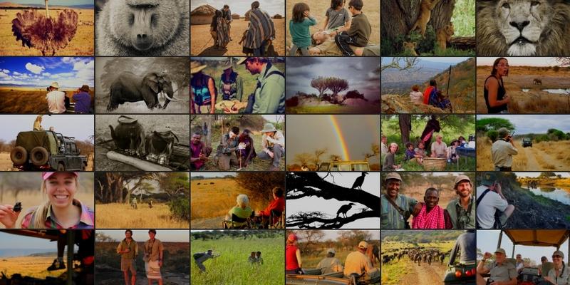 Mark Thornton Safaris, Tanzania