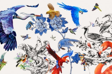 Bird painting on porcelain brought firmly and fervently into the modern day