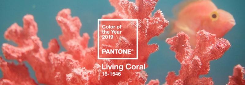 Pantone Living Coral- Pantone Color of the Year 2019-02