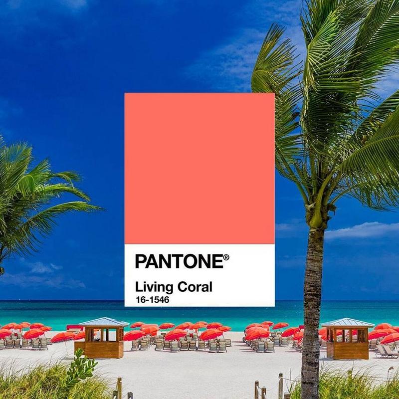 Pantone Living Coral- Pantone Color of the Year 2019