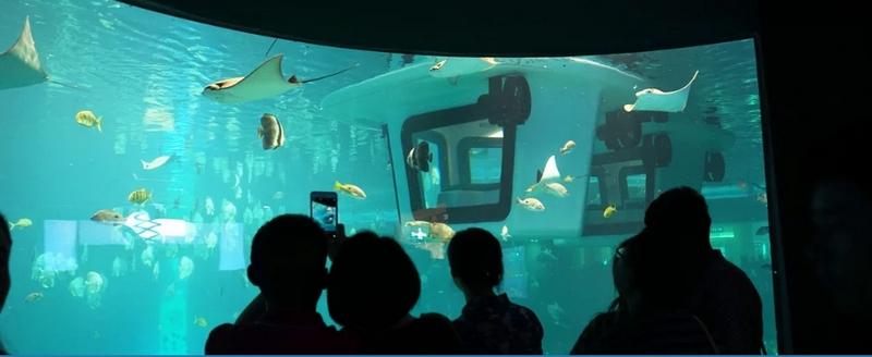 Penguin 2 0 aquarium