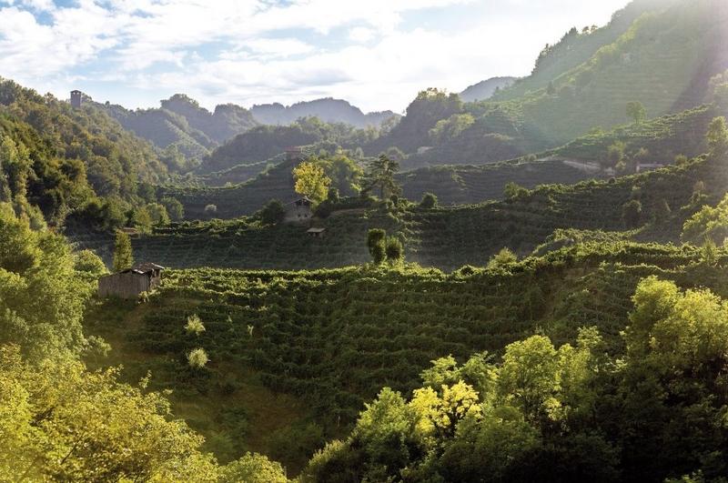 Prosecco Hills of Conegliano and Valdobbiadene proclaimed the 55th Italian UNESCO World Heritage Site 2019