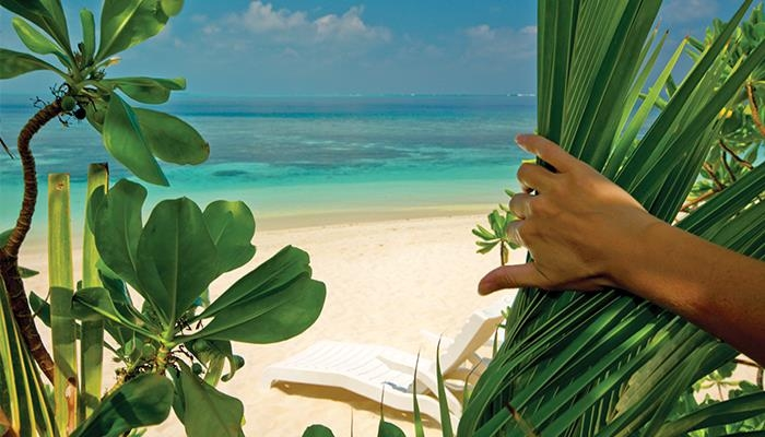 Regent Seven Seas voyage - Who wants to warm up on a nice Caribbean beach