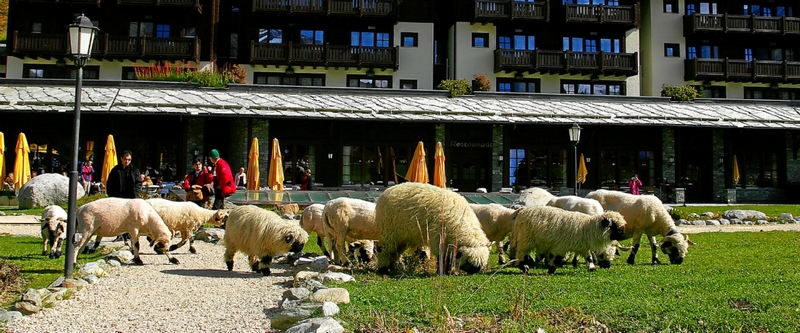 Riffelalp Resort 2222m, the highest luxury hotel in Europe