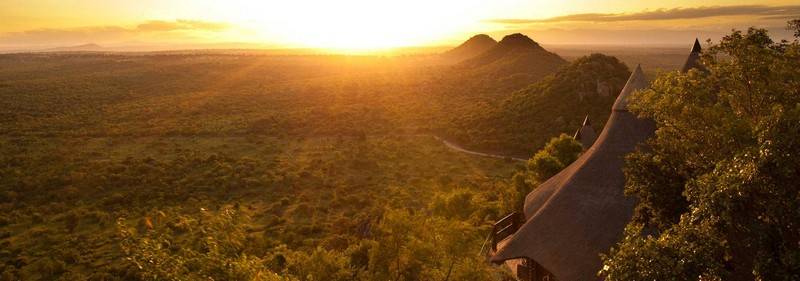 Safari Dreams at Ulusaba Private Game Reserve-
