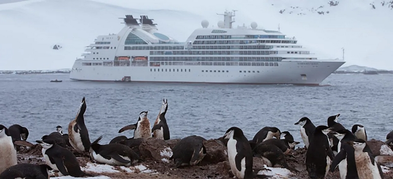 Seabourn The Ultimate Antarctica & Patagonia Experience