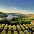 Six Senses Douro Valley-the view
