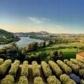 Six Senses Douro Valley-the view