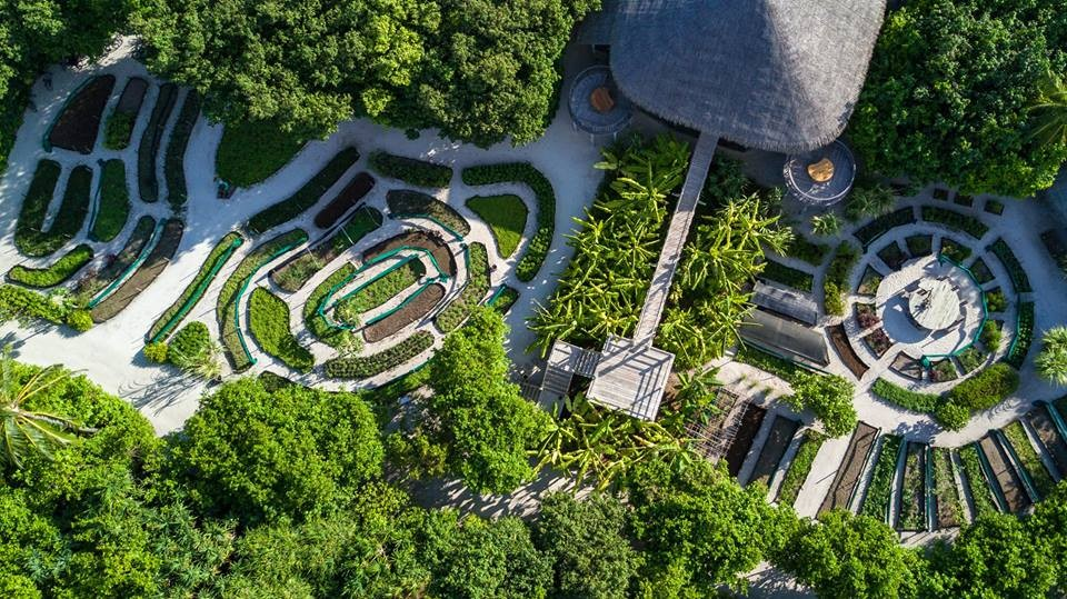 Six Senses Laamu Maldives -Birds-eye view of LEAF and the organic garden
