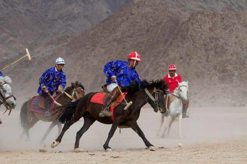 Sports of Polo