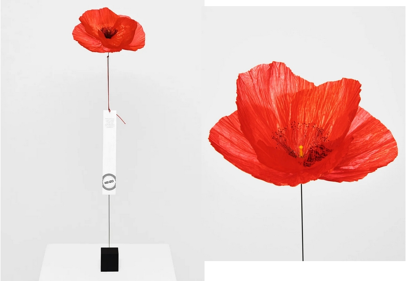 THE MESSENGER POPPY 2020-