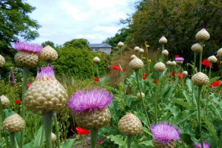 10 of the UK's best gardens to explore