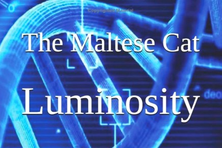 Luminosity – The Fifth Book in The Maltese Cat Book Series is Here