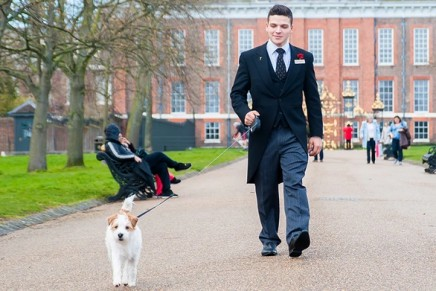 The Royal Treatment: 9 Ways to Treat Your Dog Like a Queen