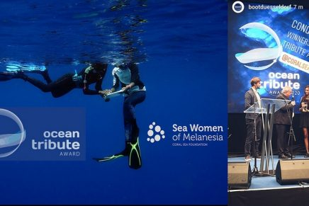 ..and the ocean tribute Award 2020 goes to Coral Sea Foundation's Sea Women of Melanesia