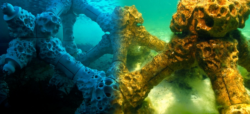 The world's largest 3D printed coral reef is to be homed the Maldives-