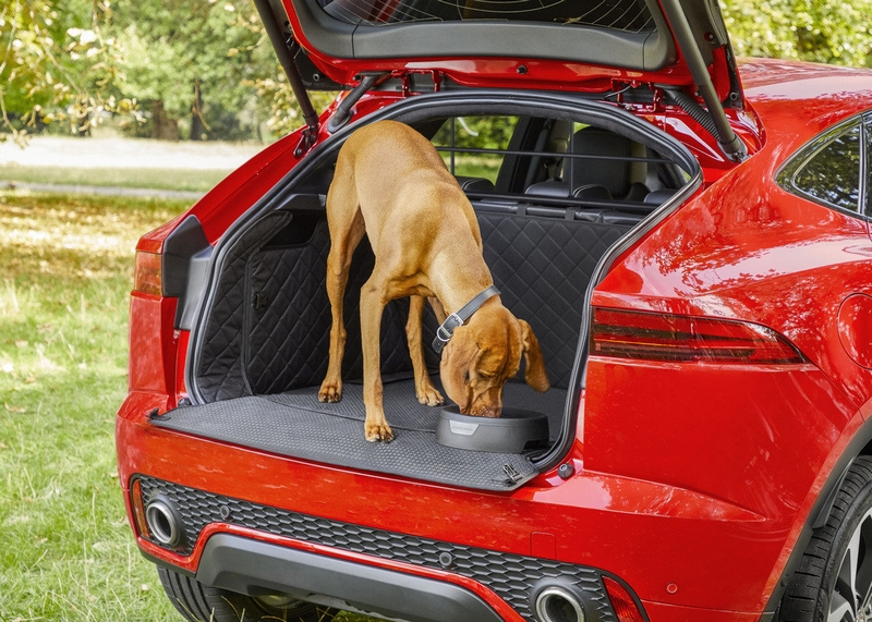 These bespoke vehicle accessories are perfect for your dog